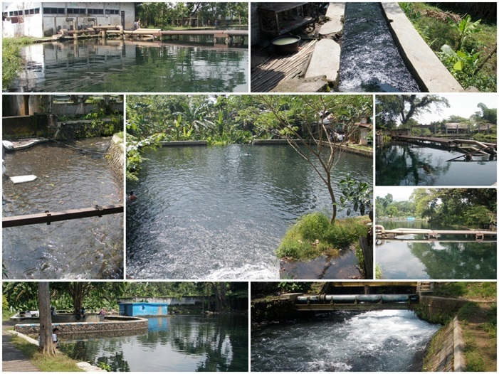 PPP Feasibility Study for Investment Umbulan Spring Water Project